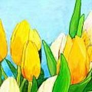 Yellow And White Tulips Art Print