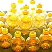 Yellow Bottle Art Print