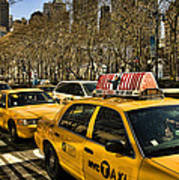 Yellow Cabs Print by Joanna Madloch