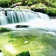 Yellow Creek Falls Great Smoky Mountains Art Print