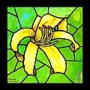 Yellow Day Lily Art Print