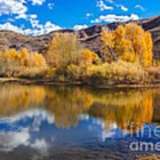Yellow Fall Reflections Art Print