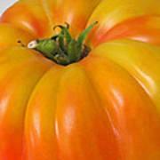 Yellow Heirloom Tomato Art Prints Art Print