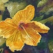 Yellow Hibiscus Art Print