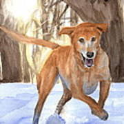 Yellow Lab Dog In Snow Watercolor Portrait Art Print