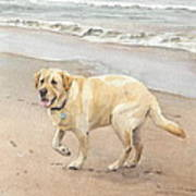 Yellow Lab On Beach Watercolor Portrait Art Print