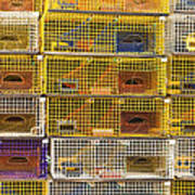 Yellow Lobster Traps In Maine Art Print
