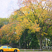 Yellow Nyc Taxi Driving Through Central Park Usa Art Print