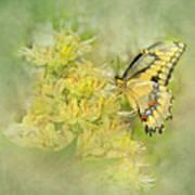 Yellow On Yellow  Art Print