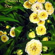 Yellow Tea Rose  Happy Mother's Day Art Print