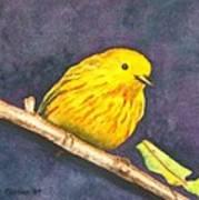 Yellow Warbler II Art Print