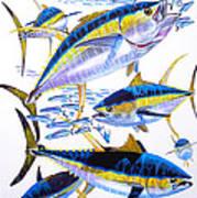 Yellowfin Run Art Print