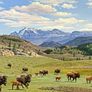 Yellowstone Spring Art Print