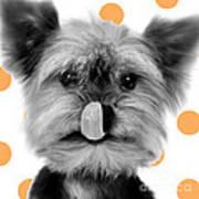 Yorkshire Terrier Dog Art Print