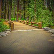 Yosemite Falls Trail Art Print
