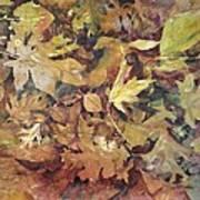 Yosemite Leaves Art Print