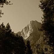 Yosemite Park Sepia Art Print