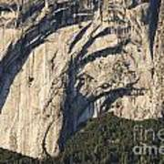 Yosemite Rock Detail Art Print