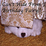 You Can't Hide Birthday Card Art Print