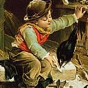 Young Boy With Birds In The Snow Art Print
