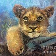 Young Lion Art Print