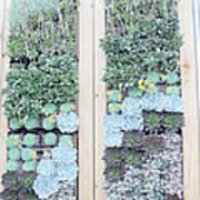 Your Garden Wall Art Print