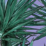 Yucca Tops Art Print