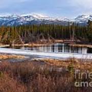 Yukon Taiga Wetland Marsh Spring Thaw Canada Art Print