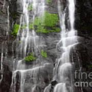 Yungas Waterfall Detail Art Print