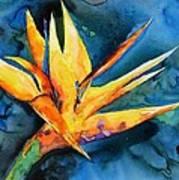Yupo Paradise Art Print