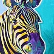 Zebra - Sunrise Art Print
