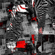 Zebra Art - 56a Art Print