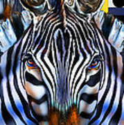 Zebra Dreams Art Print