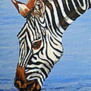 Zebra Drink Art Print