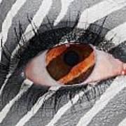 Zebra Eye Art Print