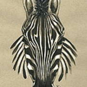 Zebra Front Art Print