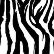 Zebra Print 001 Art Print by Kenneth Feliciano