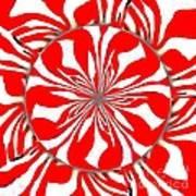 Zebra Red Swirling Kaleidoscope  Art Print