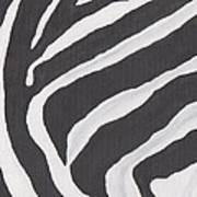 Black And White Zebra Stripes Art Print