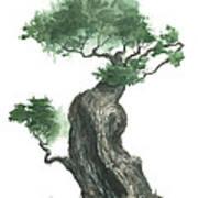 Zen Tree 1000 Art Print