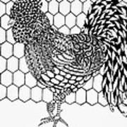 Zentangle Rooster Art Print