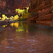 Zion Canyon Of The Virgin River Art Print