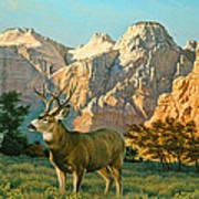 Zioncountry Muleys Art Print