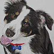 Zoey Art Print