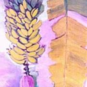 Florida Apple Bananas - 1 Art Print