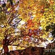 Autumn High Art Print