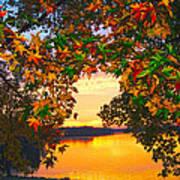 Autumn Leaves A View Art Print