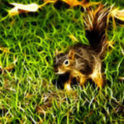 - Fractal - Pointer - Robbie The Squirrel Art Print