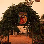 Ivy Planting Patch Arch Art Print