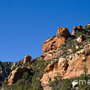 Red Rock And Pines Art Print